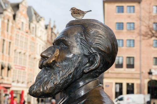 mus op hoofd van standbeeld aan