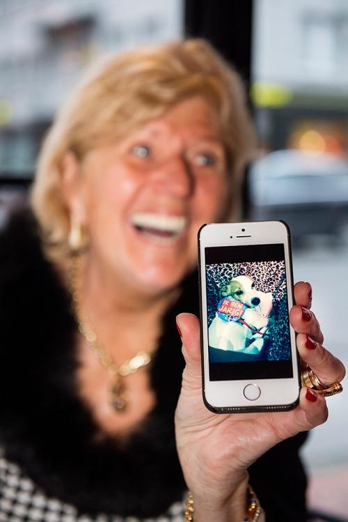 2015/12/16 knokke belgium: hond en mens vriendschap relatie hondentrimsalon. vrouw toont gsm met foto van haar hondje op diens verjaardag in het restaurant foto ivan put